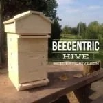 Beecentric Hive Comeplete 2