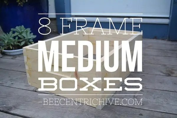 8 Frame Medium Hive Boxes for Brood and Honey - BeecentricHive.com