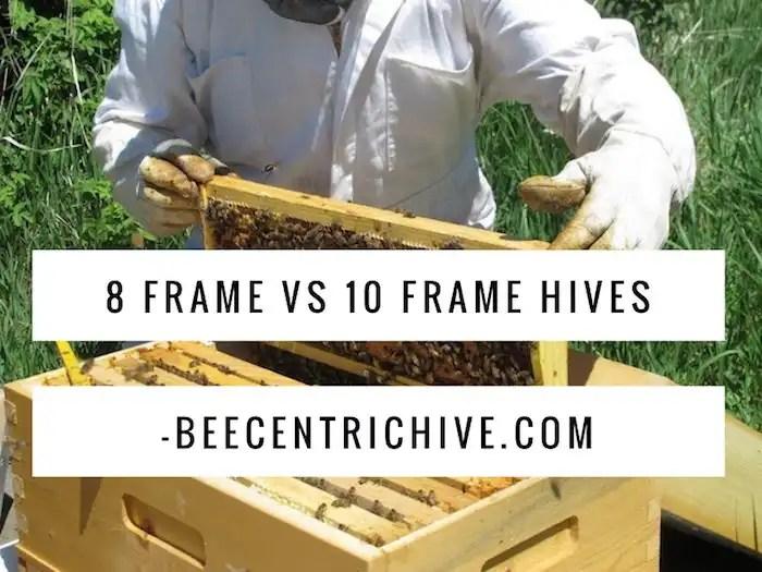 8 Frame vs 10 Frame Beehives - BeecentricHive.com