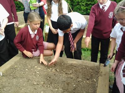 LKS2 Planting