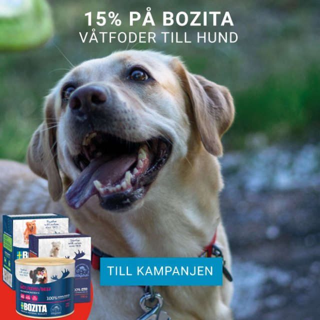 15% på Bozita Våtfoder till hund
