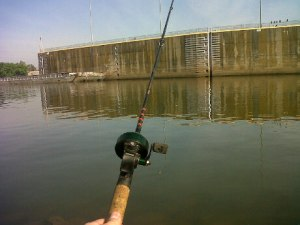 I am not a good fisherman beef runner for Is today a good day to go fishing