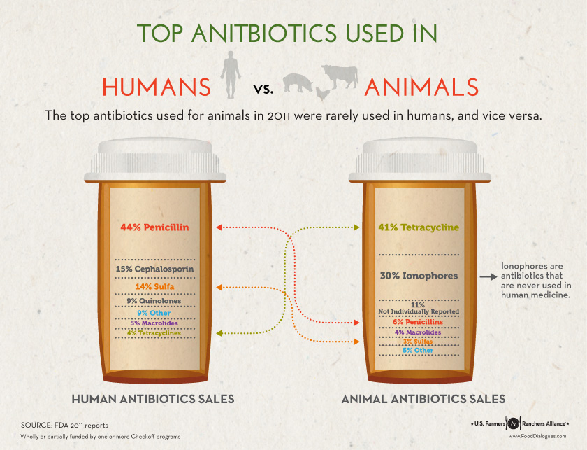 Antibiotics Use in Livestock with a Veterinarian | Agriculture Proud Podcast 003