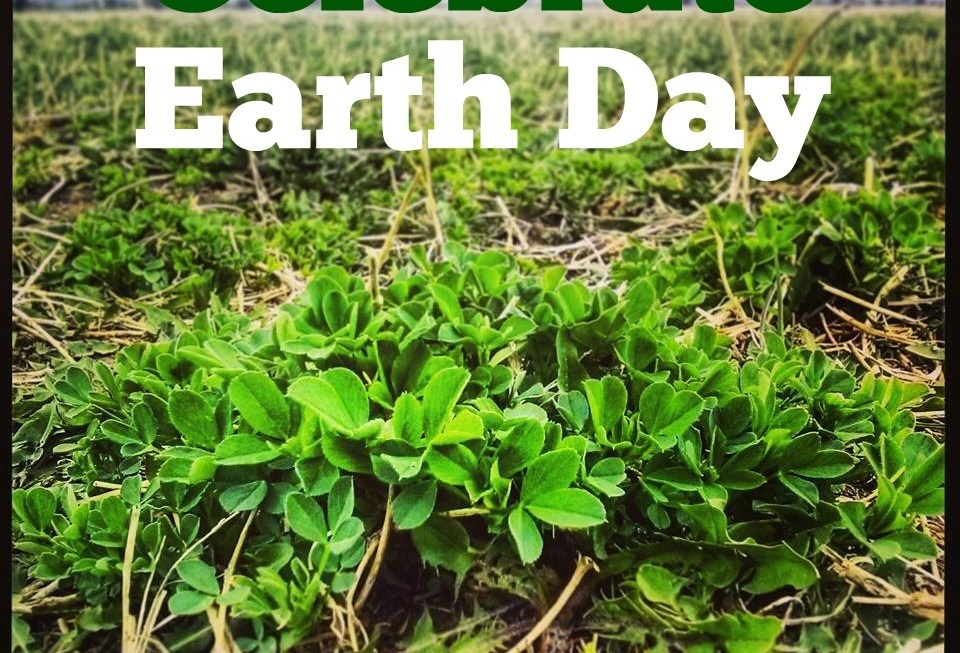 Agriculture Celebrates Trees on Earth Day 2016