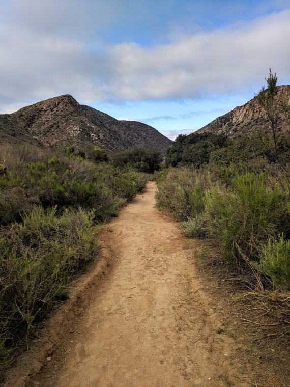 Mission Trails Regional Park in San Diego trail running