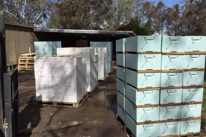 Neue australische Bienenbeuten auf Palleten gestapelt