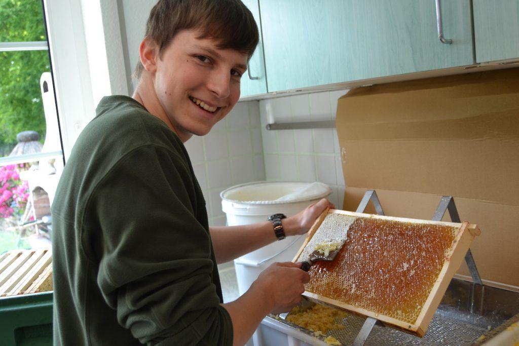 Der Imker Felix Mrowka beim entdeckeln von Honigwaben mit einem Entdecklungsgeschirr