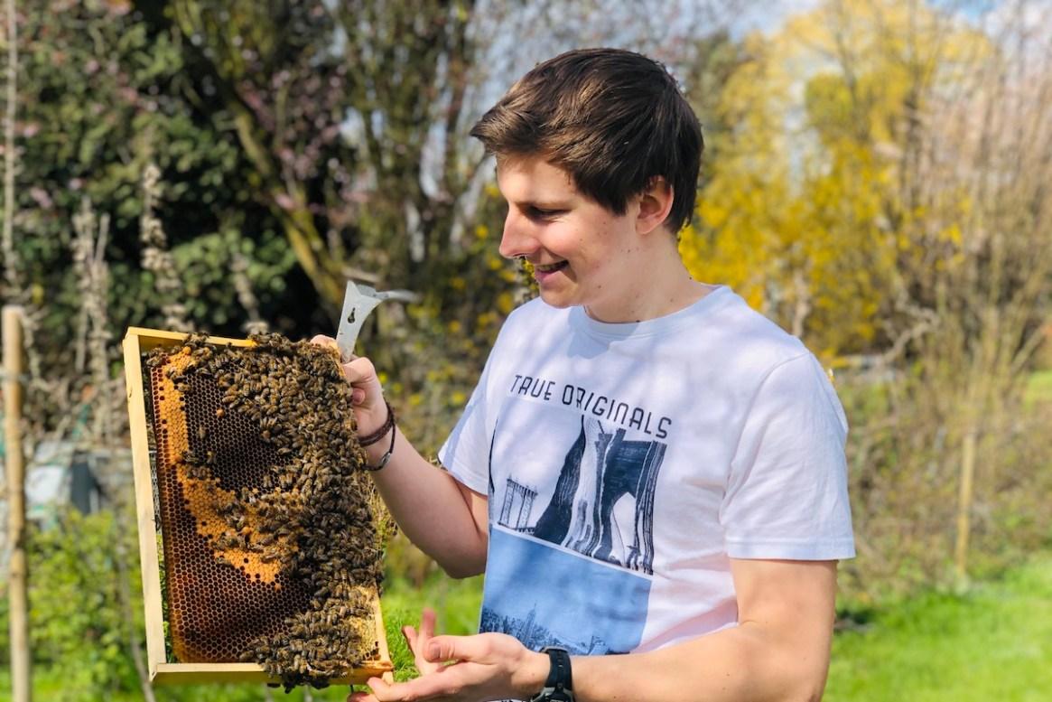 Imker Felix Mrowka im T-Shirt mit Bienenwabe
