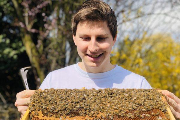 Bild - Blogartikelserie Monat für Monat durch das Bienenjahr