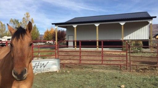 Pole Barn Ag Building - Beehive Buildings - 30'x40'14'