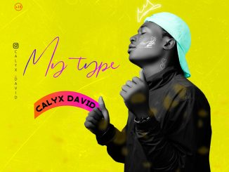 My Type - Calyx David