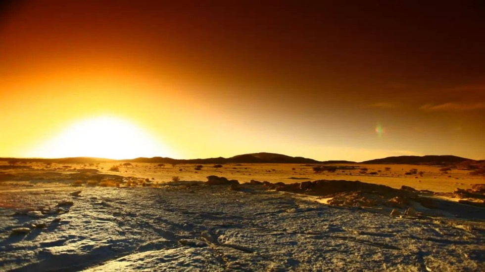 Sahara Wonderland 20089169