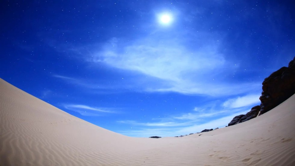 Sahara Wonderland 24214867