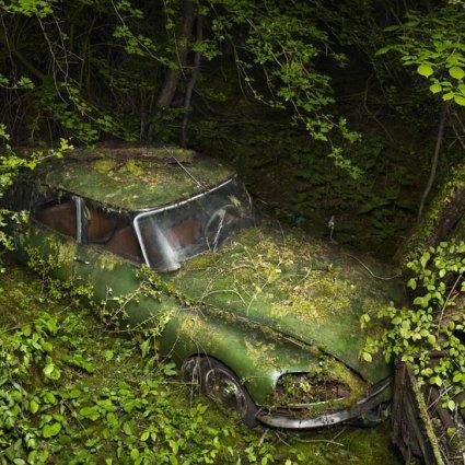 Paradise Parking de Peter Lippmann