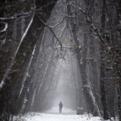 Photography Inspiration #Snow