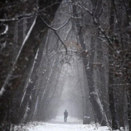 Photography Inspiration #Snow