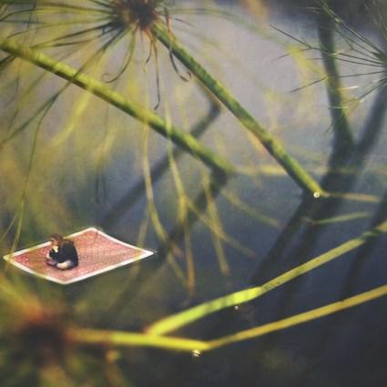 Magnifiques montages conceptuels /Fiddle Oak
