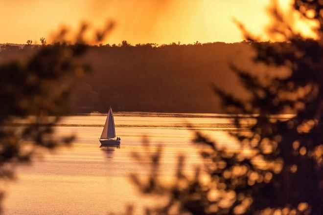 Sailboat Through The Pines - Greg Ness