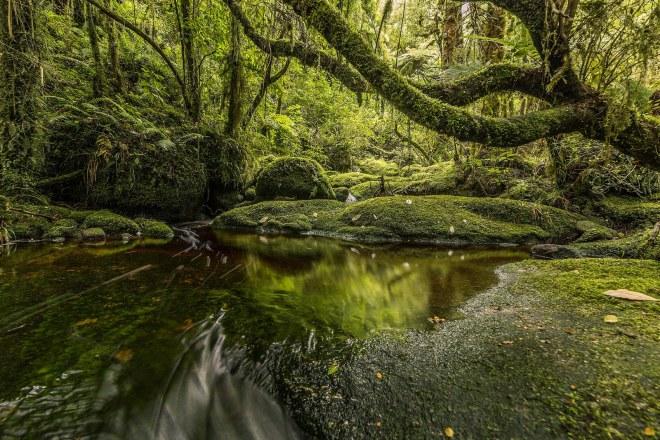 New Zealand 4K - Martin Heck 67910917