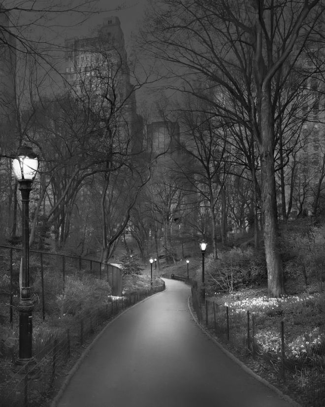Central Park / Michael Massaia