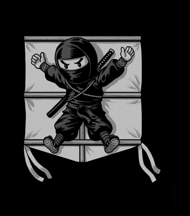 Ninja Kite