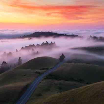 Captures du brouillard autour de San Francisco / Nicholas Steinberg