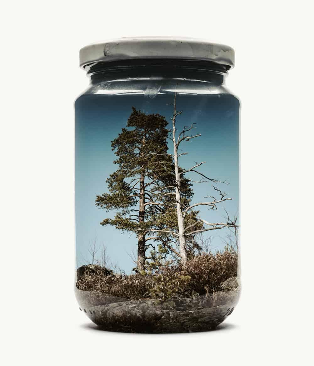 Des paysages dans des pots en verre / Christoffer Relander