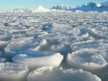 Pancake sea ice