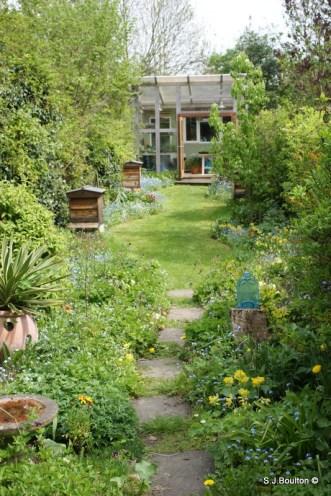 My garden habitat