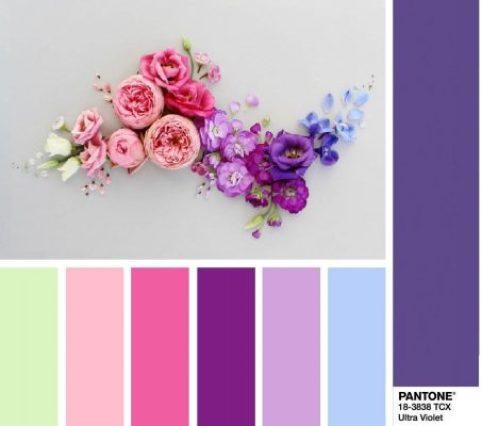 Ultra Violet  ได้การยกย่องให้เป็นสีประจำปี 2018 โดยPantone 2
