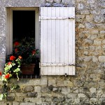 Flowers in Normandy © Michael Raymond 2016