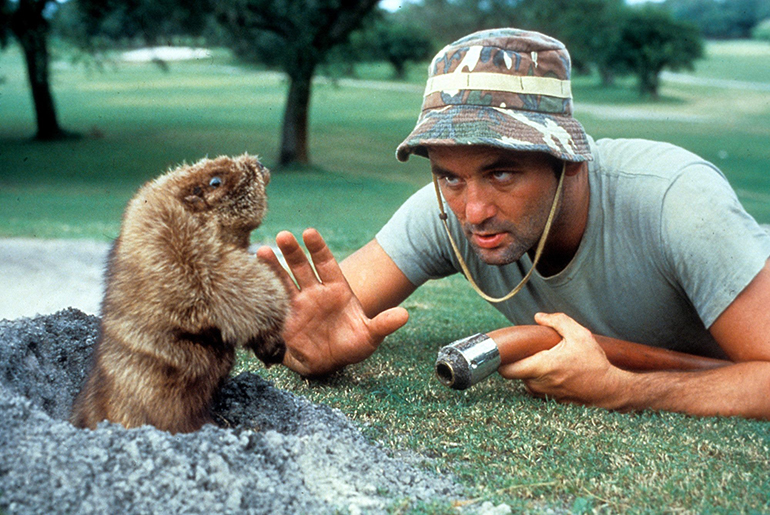 Bill Murray and gopher in Caddyshack