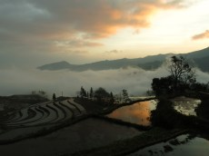 35 - Yuanyang - sunrise on the rice terraces