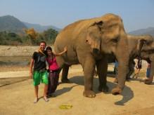 11 - Chiang Mai - Elephant nature park