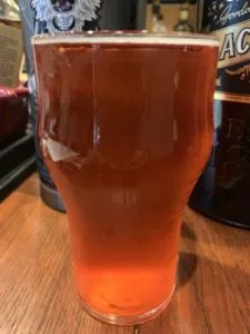 カケガワビール(ブラックベリー&セトカ)
