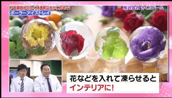 ポーラーアイストレイ 花
