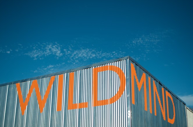 wild-minds-1-of-12