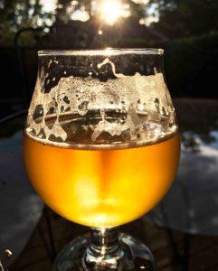 BeerCup Sun