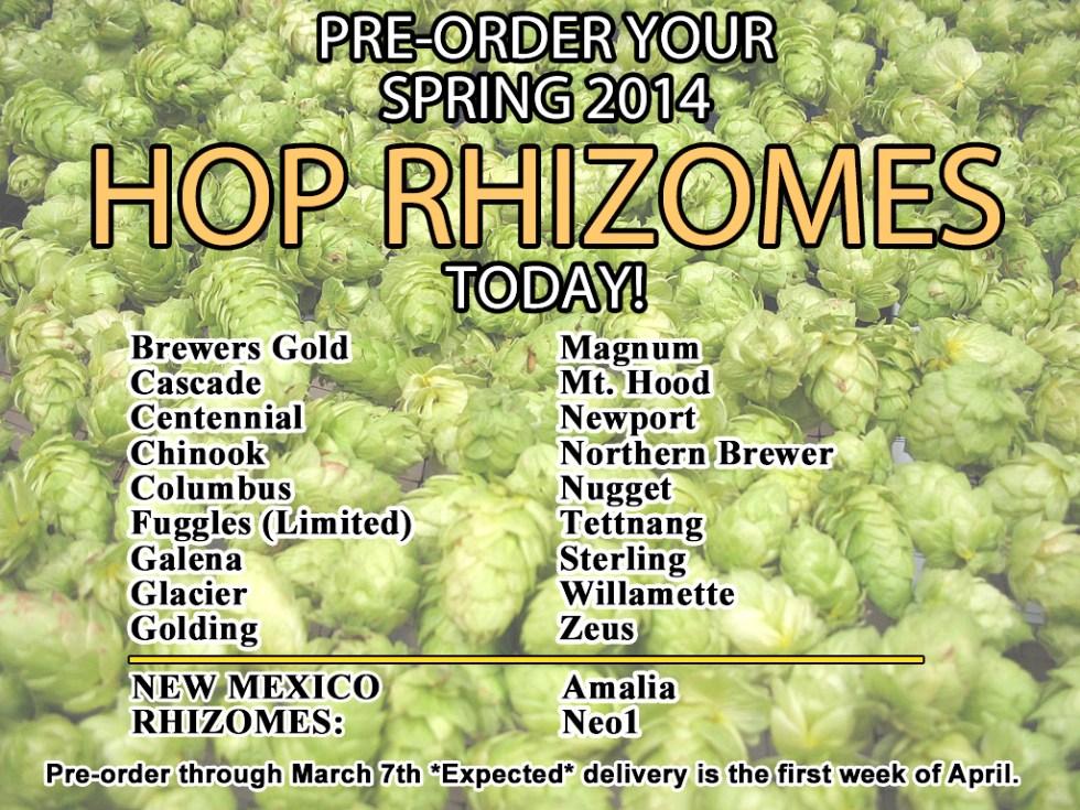 2014 Hops Rhizomes