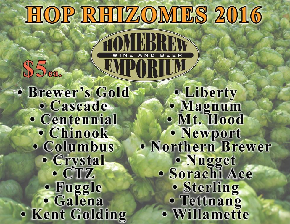 Hop rhizomes 2016