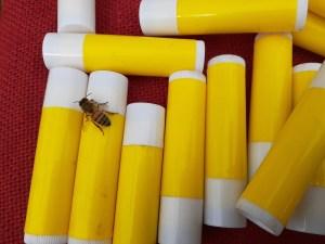 Lippy M Chap stick