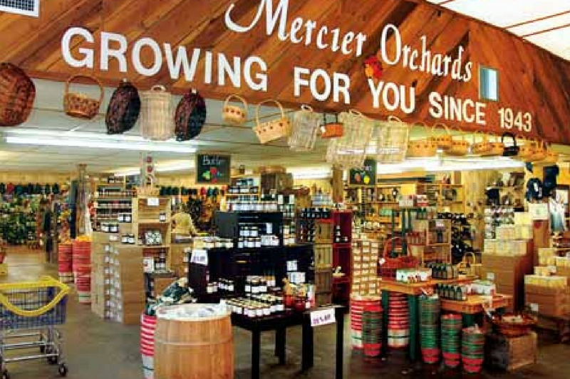 Mercier Orchards is a popular tourist destination for folks heading to North Georgia. (Photo courtesy Mercier Orchards)