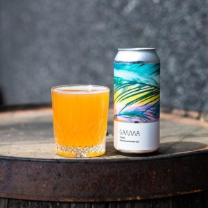 Frond_Sour_Gamma_Brewing