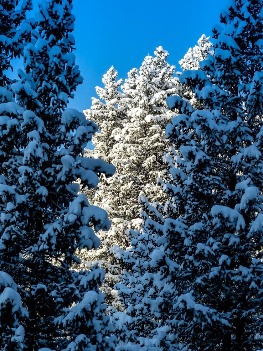 d9f40-snow-1080396