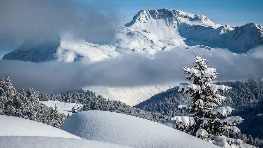 Winterwelten Arosa Lenzerheide Chalet Weisshfluh joch davos Winter Schnee Berge Nebel Sonne verschneite Bäume
