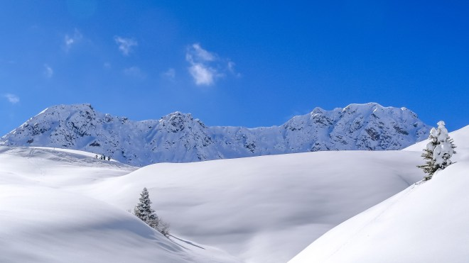 nach dem grossen Schneefall Arosa-1100161