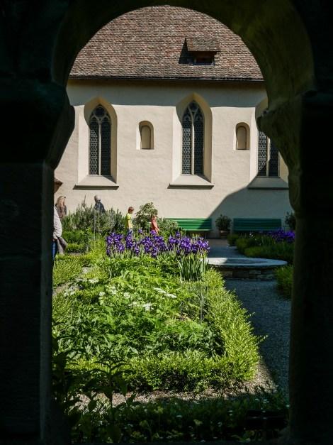 Bodensee Ufer Weg Wanderung-2480439