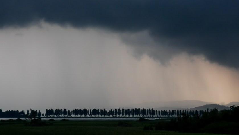 niedriger Wasserstand Bodensee
