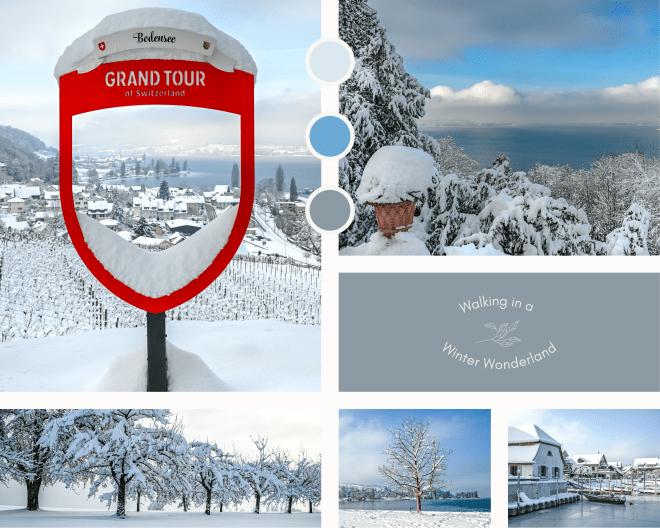 Der Blick vom Schloss Arenenberg runter auf die verschneite Seenlandschaft