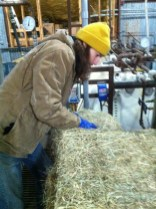 Head Brewer Garrett Crowell with bales of hay on brew day